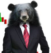 What Really Caused This Bear Market?