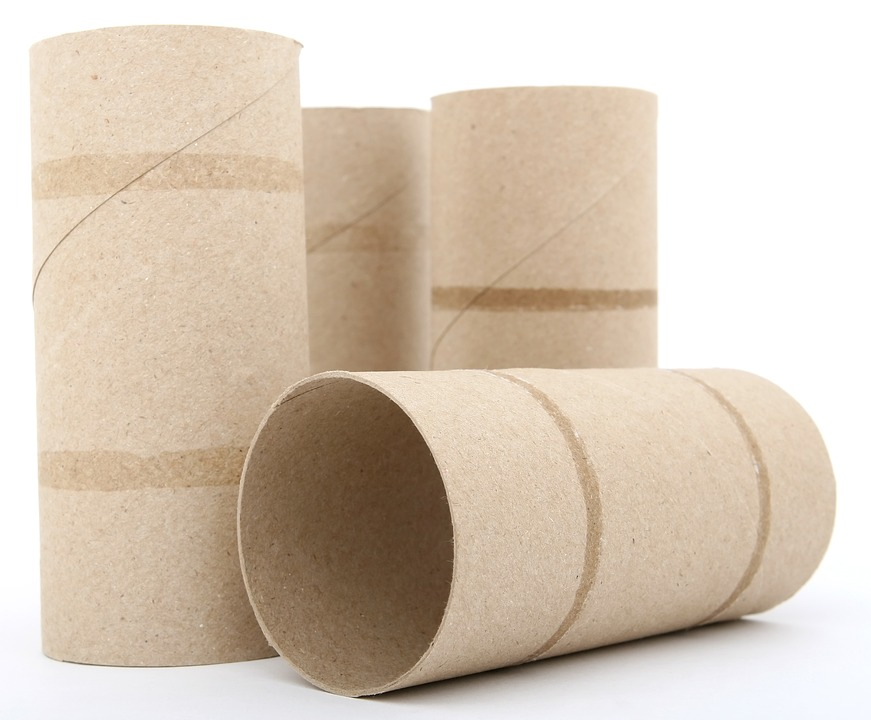 The Great Toilet Paper Crisis of 2020